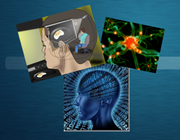 Traditional cog sci: the mind is inseparable from brain processes and the notion of the mind as a computer was widespread