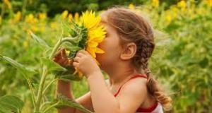 Image: http://www.babyfloret.com/blog/Babies-Sense-Smell-Birth.html
