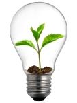 light-bulb-idea-head-eco-friendly-decorating-budget-wise-home-1200x1600