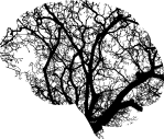 brain-2146817_1280